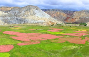 About Upper Mustang